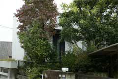 ドラム練習室概観(庭の木々に囲まれた格別なスペース)